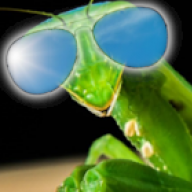 Dave_the_Mantis
