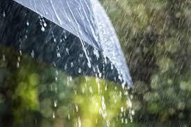 Image result for raining bans