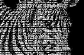 ASCLL-zebra_1.png