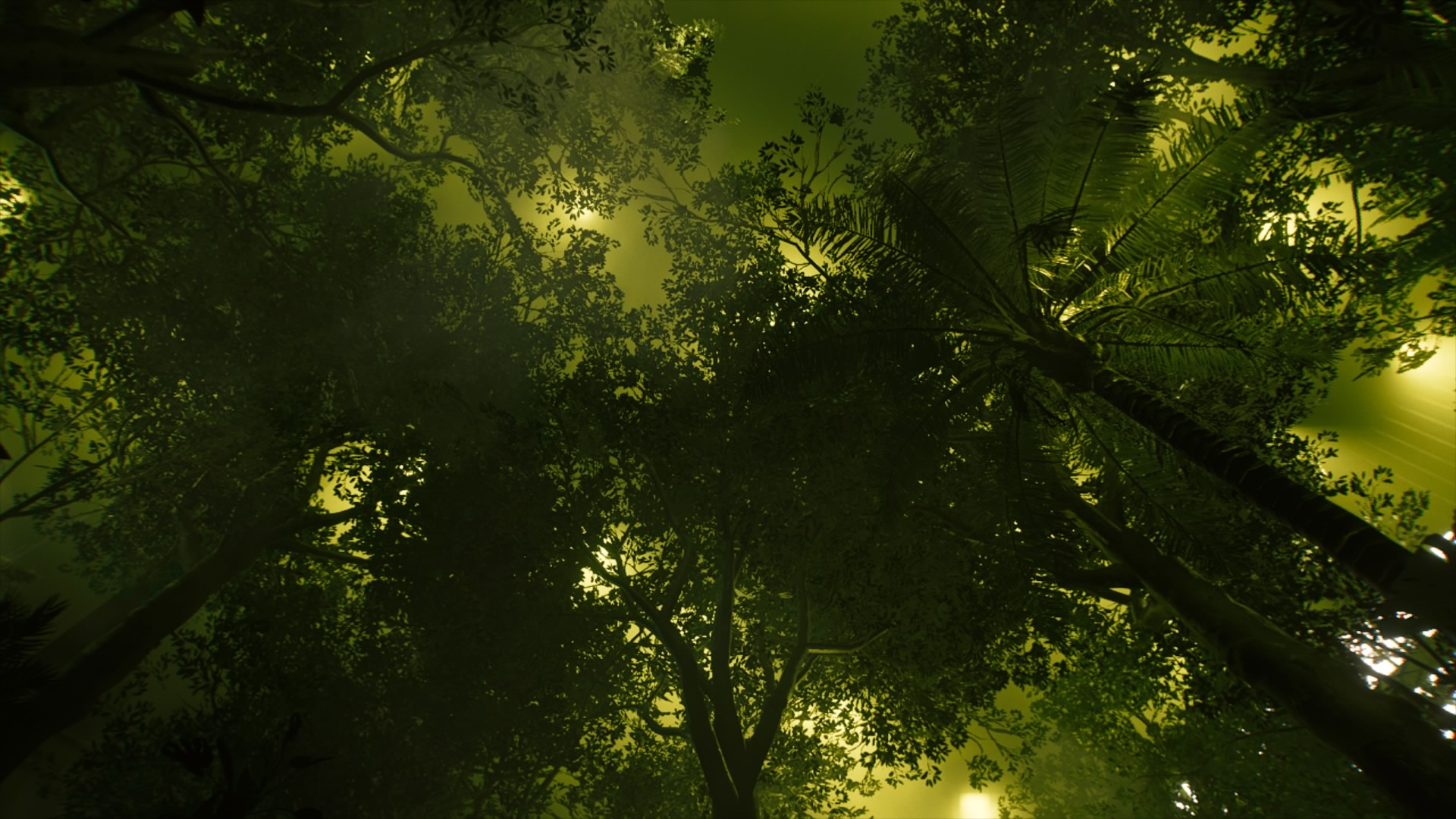 CP77_R3S4_MysticForest1.jpg