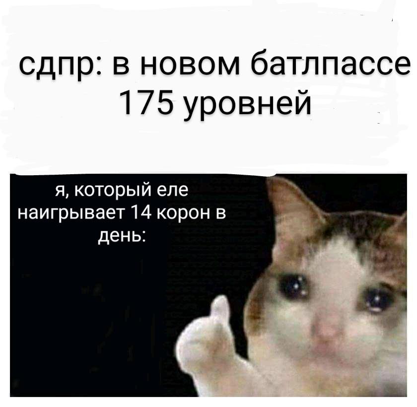 FB_IMG_15968976910565297~2.jpg