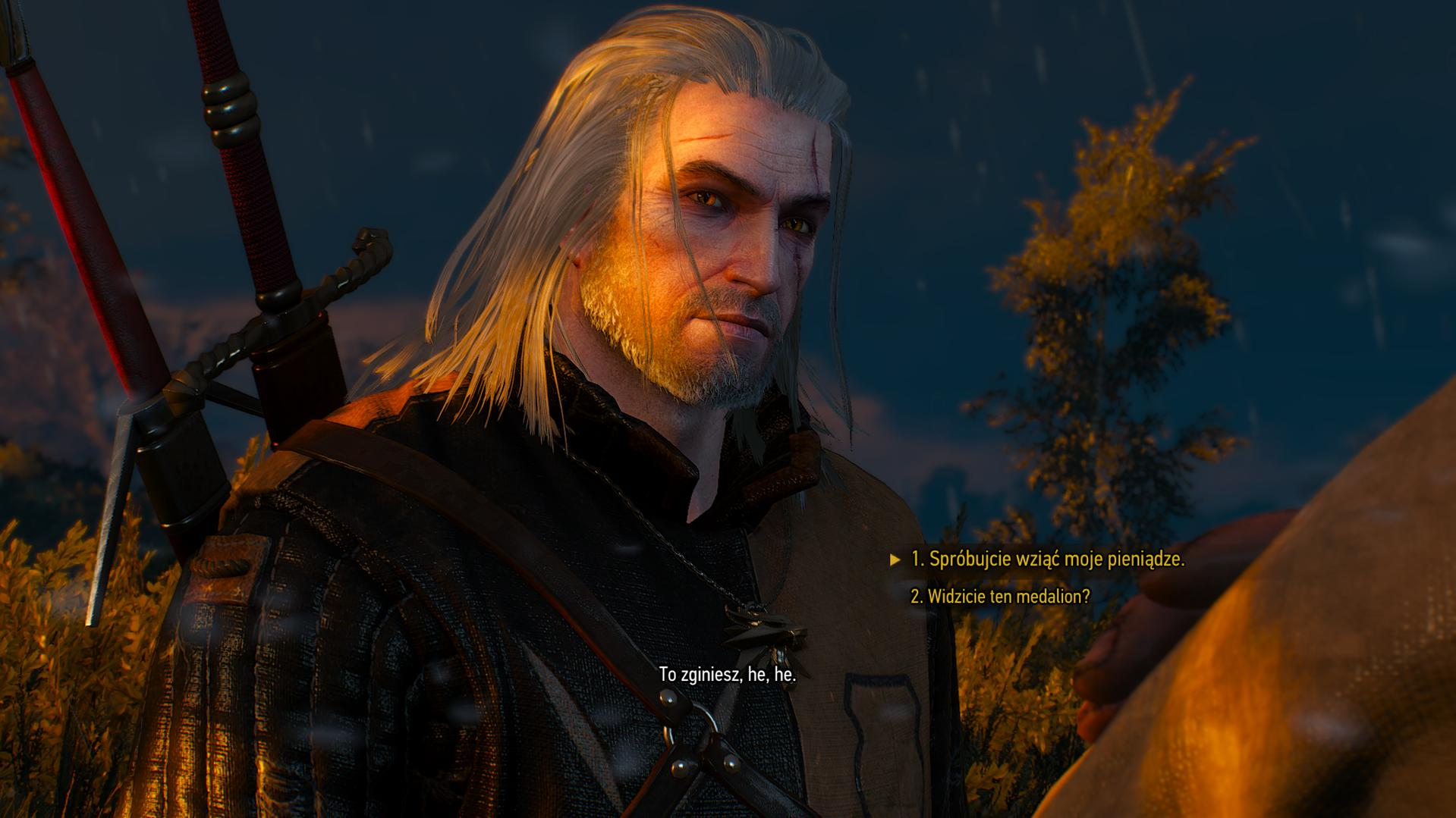 Best Witcher 2 Hairstyle Hairstyle