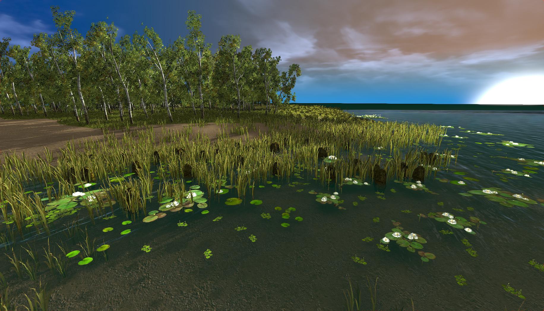 island31.jpg