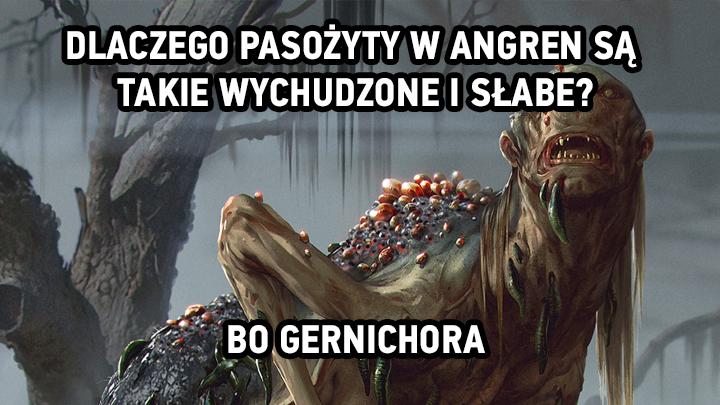 meme 720x405.png