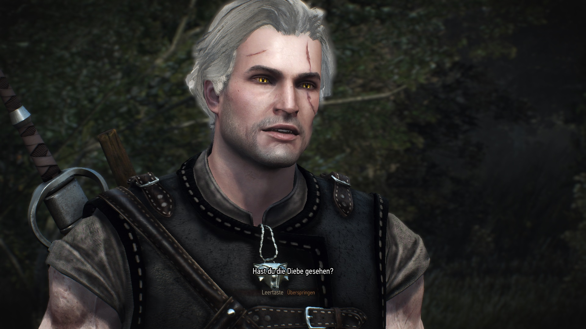 The Witcher 3 14.10.2020 11_30_22.jpg