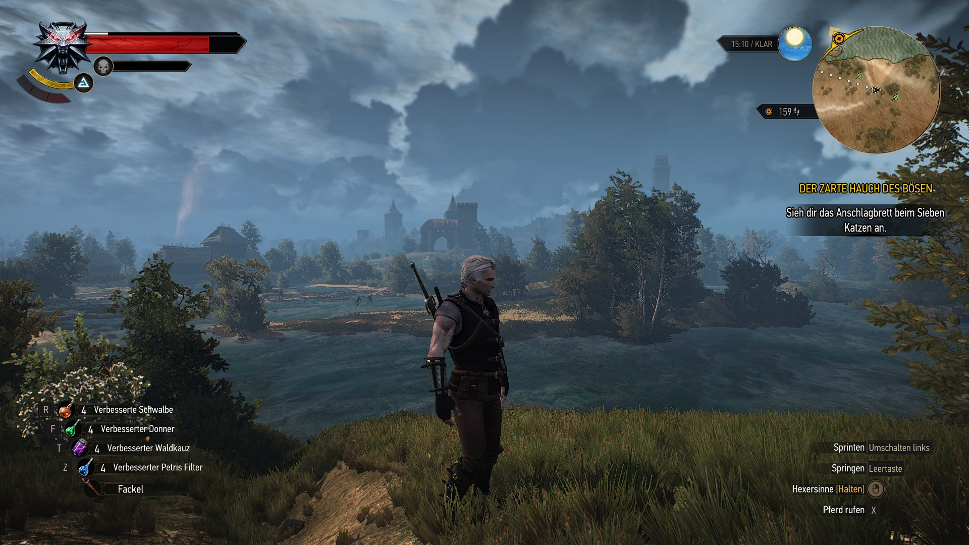 The Witcher 3 14.10.2020 11_45_52.jpg