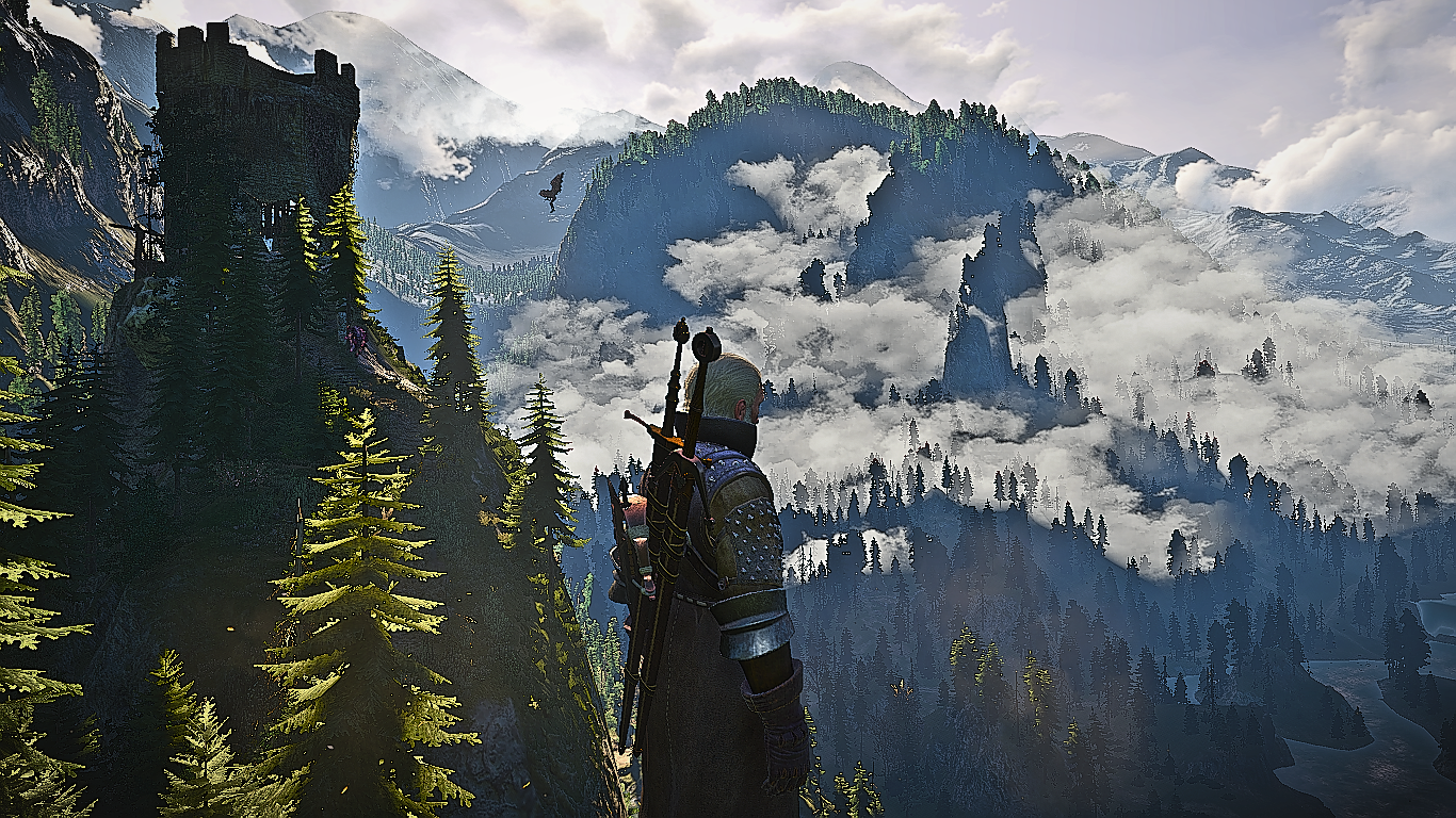 The Witcher 3 Screenshot 2020.11.08 - 21.00.47.07.png