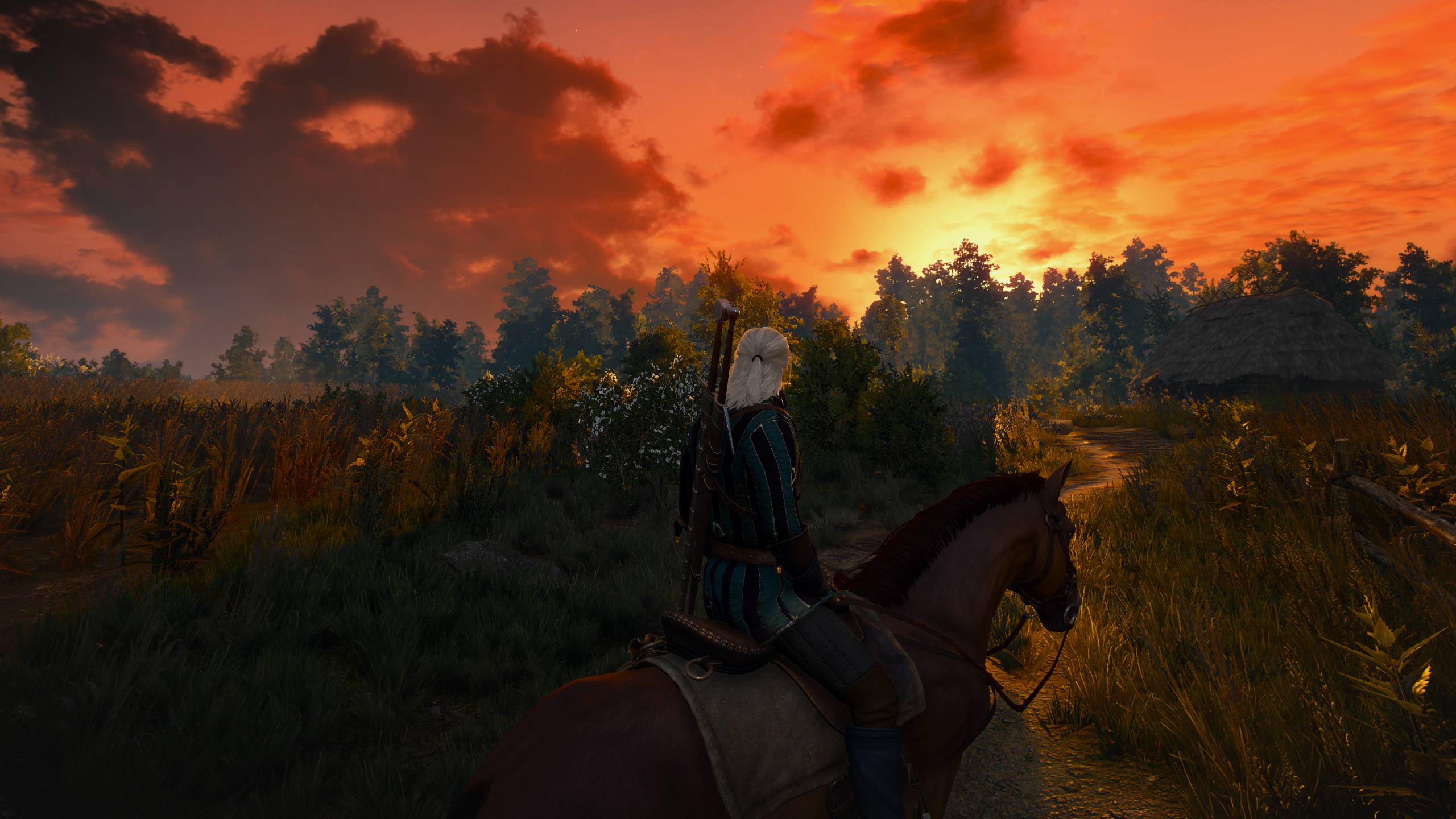 The Witcher 3 Screenshot 2021.07.10 - 01.47.29.73.png