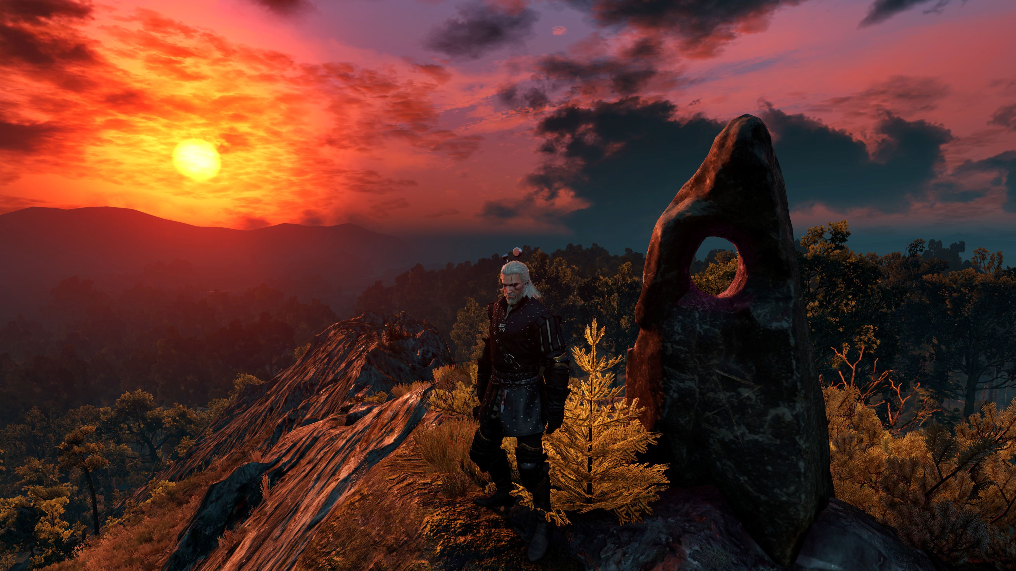 The Witcher 3 Super-Resolution 2020.05.05 - 13.55.35.43 Raw2.jpg