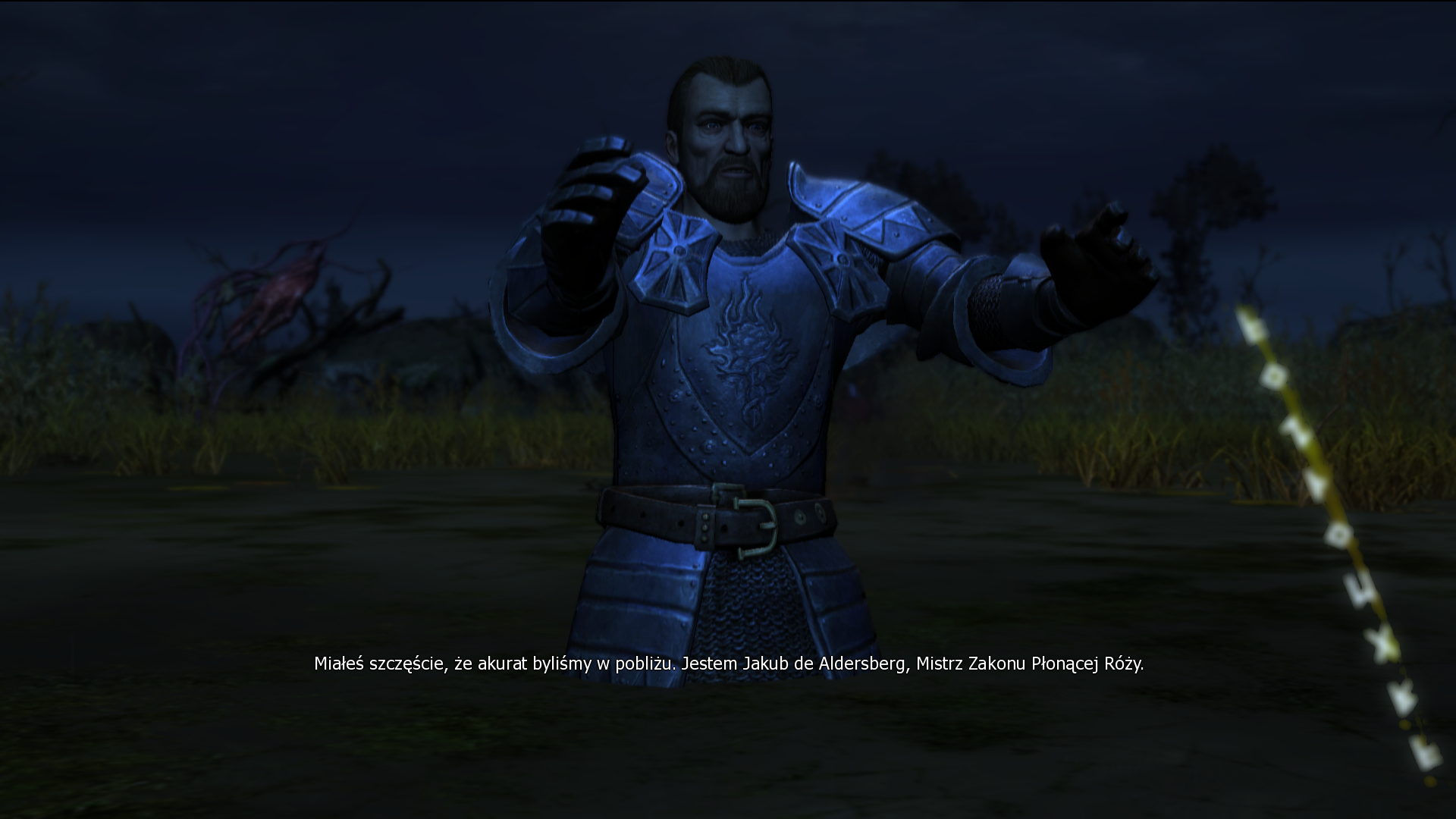 The Witcher Screenshot 2020.12.10 - 14.54.58.57.png